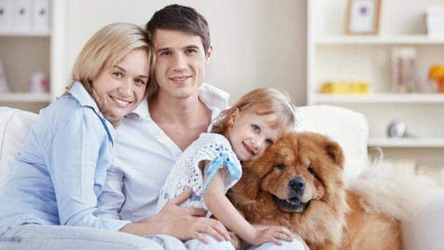 Wills & Trusts dog-young-family Direct Wills Lewisham